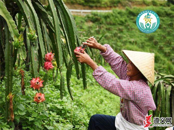 http://www.qguiyang.com/v/b/images/2020/7/10/20207101594353433855_402.png