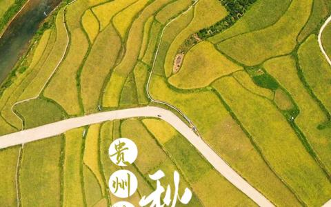 【海报】撞见贵州的秋天